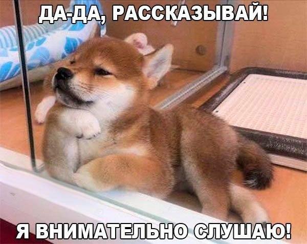 http://clandf.ru/uploads/images/2016/12/13/ffuzc_mbmew.jpg